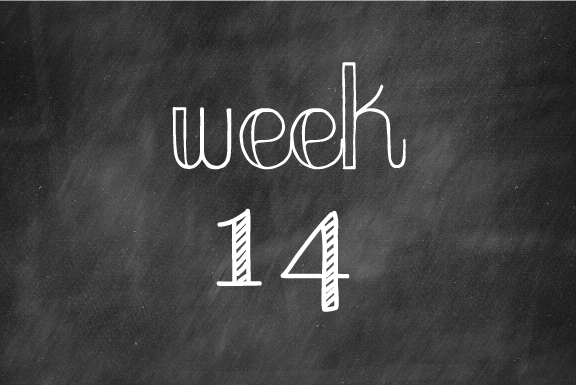 Week 14 – Construction begins!