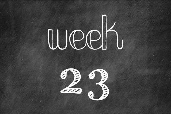 Week 23- An exciting year ahead!