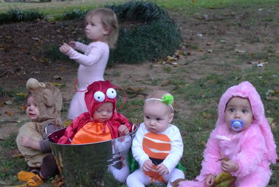 Zoë's 1st Halloween